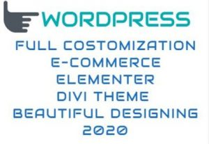 I will develop and design an eye catching wordpress site for your business